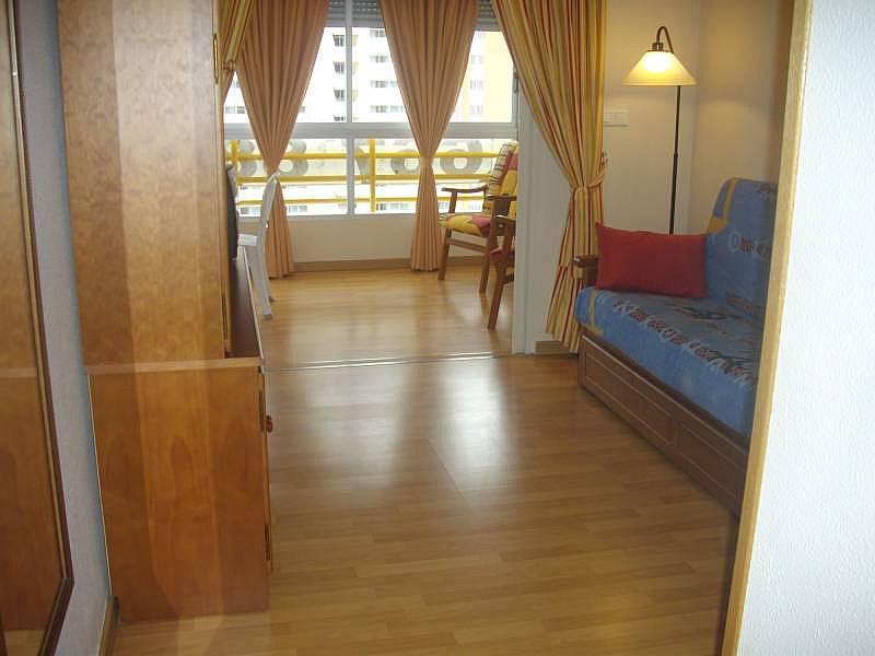 Foto - Apartamento en venta en calle Uruguay, Poniente en Benidorm - 260062532