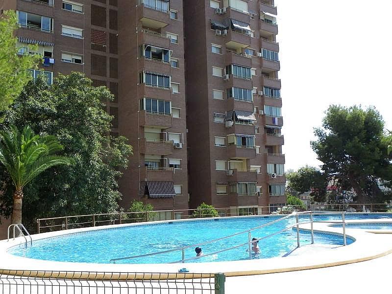 Foto - Apartamento en venta en calle Armada Española, Poniente en Benidorm - 274576118
