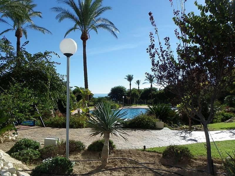 Foto - Apartamento en venta en calle Murtal, Poniente en Benidorm - 315930142