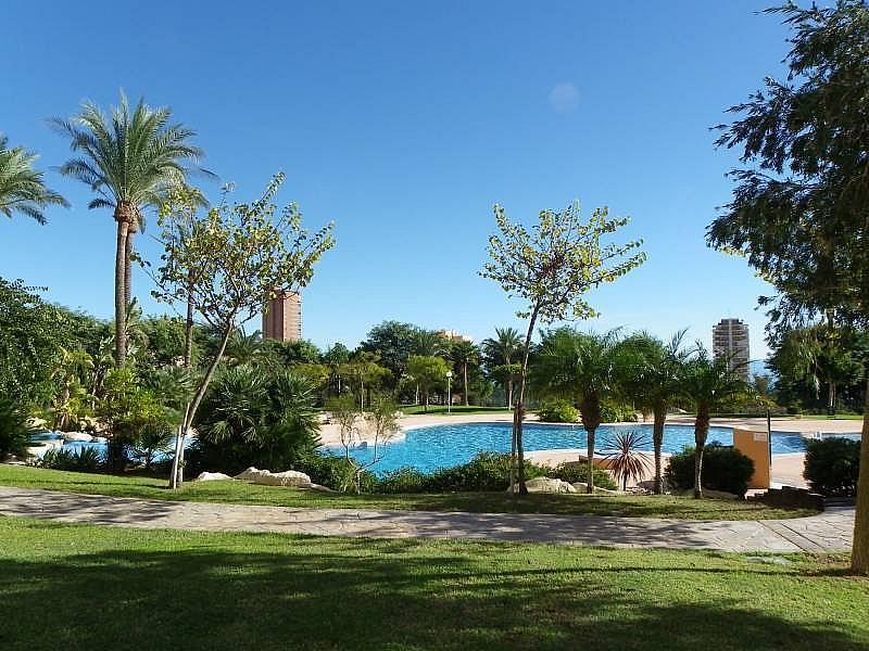Foto - Apartamento en venta en calle Murtal, Poniente en Benidorm - 315930148