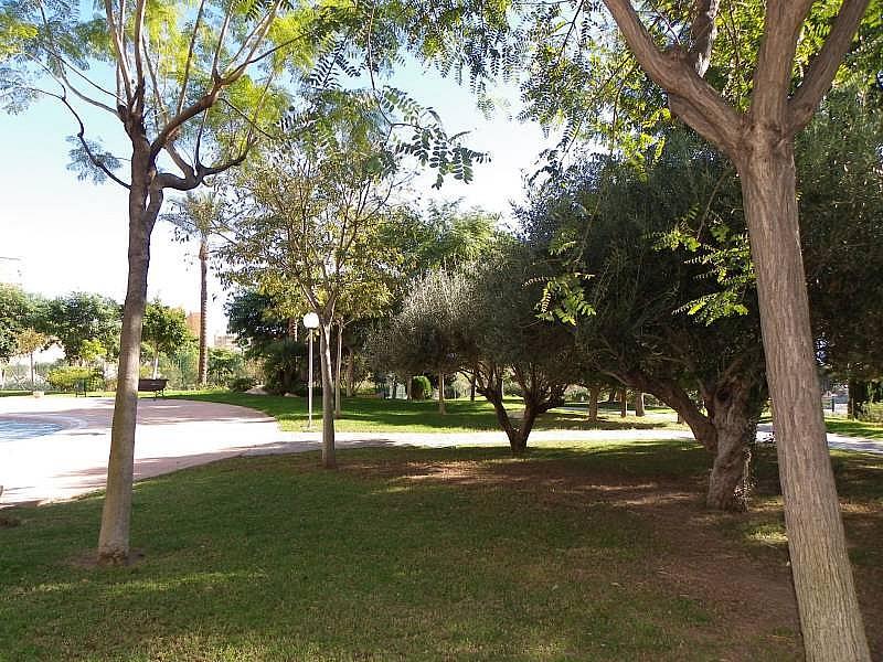 Foto - Apartamento en venta en calle Murtal, Poniente en Benidorm - 315930154