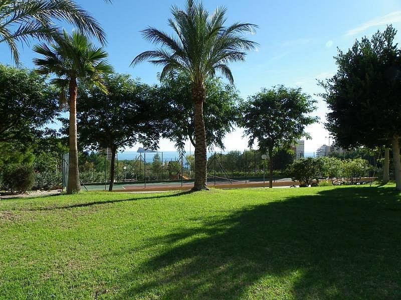 Foto - Apartamento en venta en calle Murtal, Poniente en Benidorm - 315930160