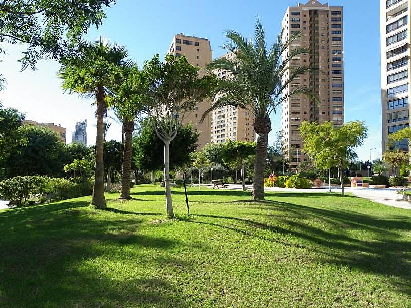 Foto - Apartamento en venta en calle Murtal, Poniente en Benidorm - 315930163