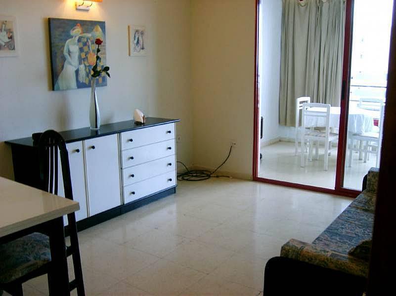 Foto - Apartamento en venta en calle Andalucia, Benidorm - 195728085