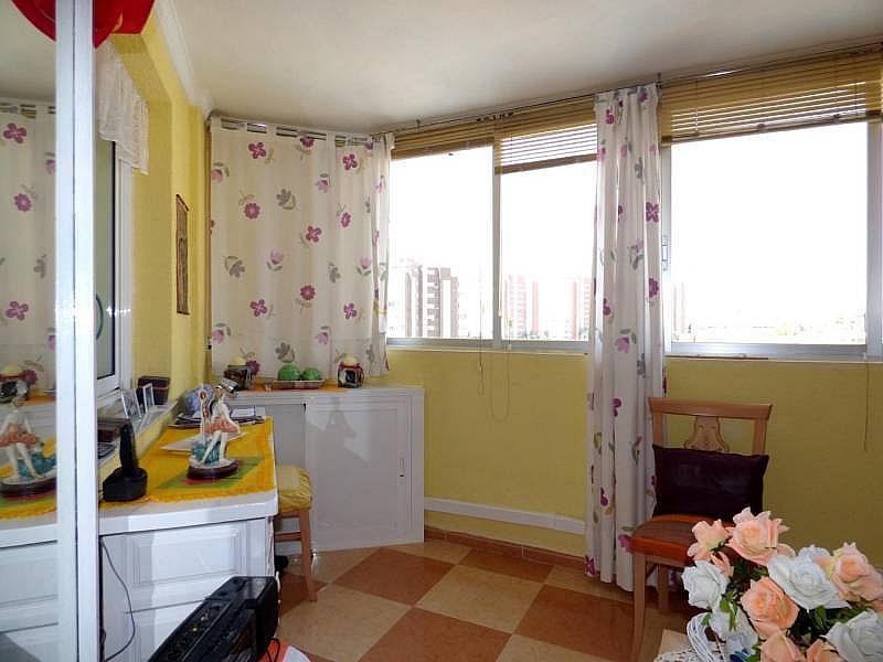Foto - Apartamento en venta en calle Honduras, Poniente en Benidorm - 197302261