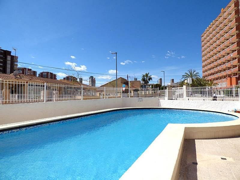 Foto - Apartamento en venta en calle Honduras, Poniente en Benidorm - 197302285
