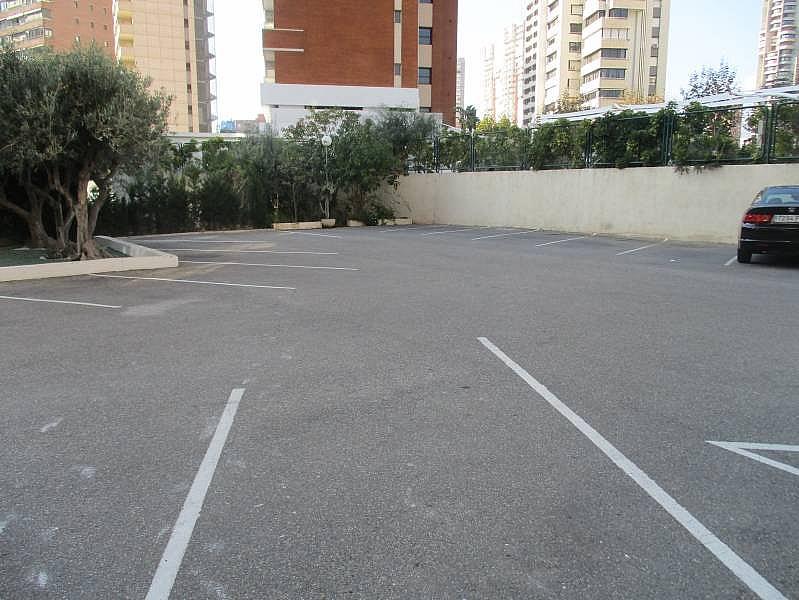 Foto - Apartamento en venta en calle Marbella, Levante en Benidorm - 236073474