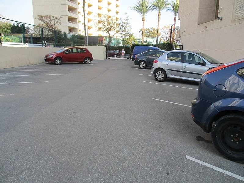 Foto - Apartamento en venta en calle Marbella, Levante en Benidorm - 236073477