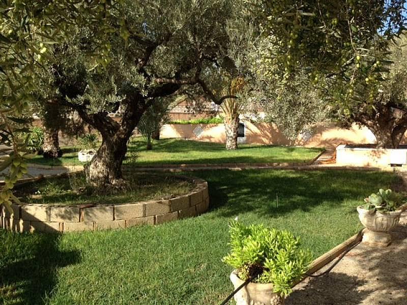 Foto - Chalet en alquiler en San Vicente del Raspeig/Sant Vicent del Raspeig - 312034060