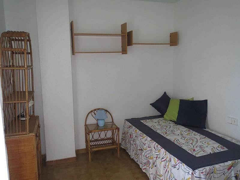 Foto - Piso en alquiler en El Palmeral - Urbanova - Tabarca en Alicante/Alacant - 315520802