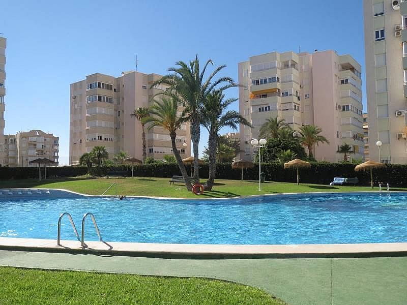 Foto - Piso en alquiler en El Palmeral - Urbanova - Tabarca en Alicante/Alacant - 315520808