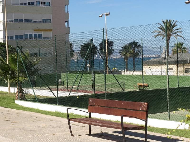 Foto - Piso en alquiler en El Palmeral - Urbanova - Tabarca en Alicante/Alacant - 315520811