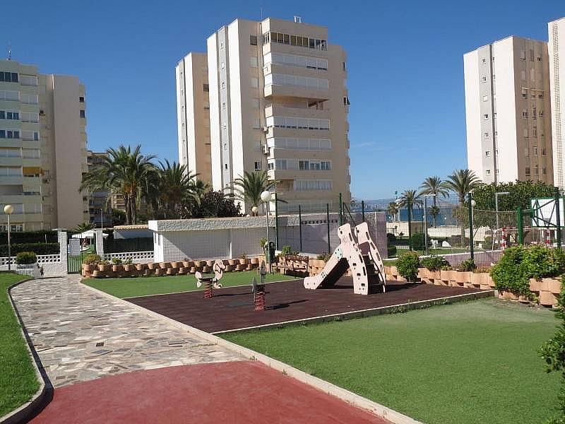 Foto - Piso en alquiler en El Palmeral - Urbanova - Tabarca en Alicante/Alacant - 315520814