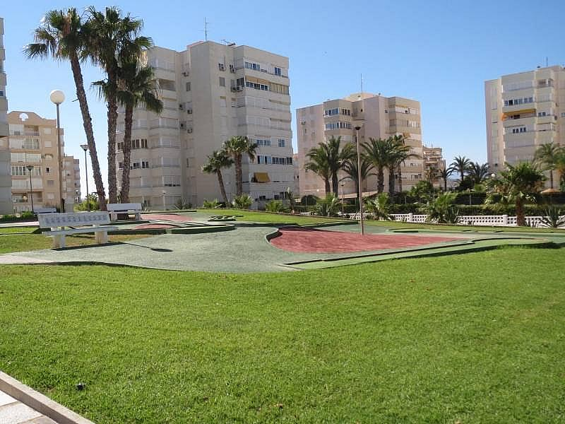 Foto - Piso en alquiler en El Palmeral - Urbanova - Tabarca en Alicante/Alacant - 315520817