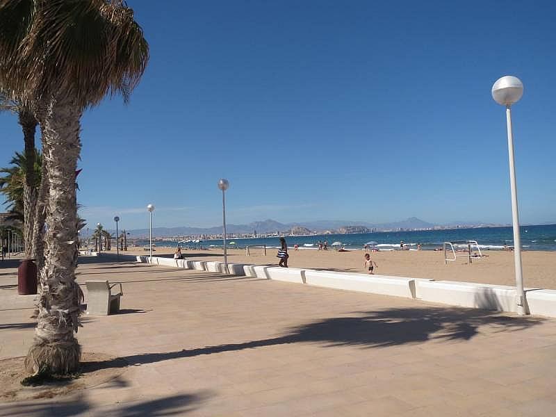 Foto - Piso en alquiler en El Palmeral - Urbanova - Tabarca en Alicante/Alacant - 315520820