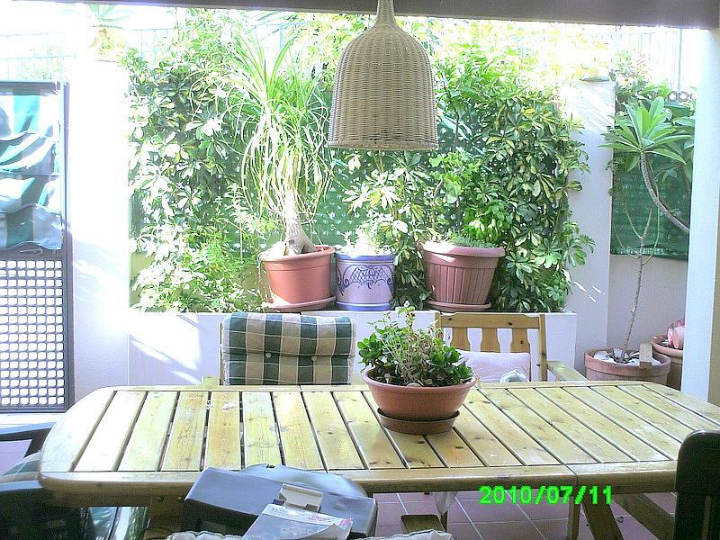 Terraza - Bajo en alquiler en calle Sillares, Benajarafe - 148509114
