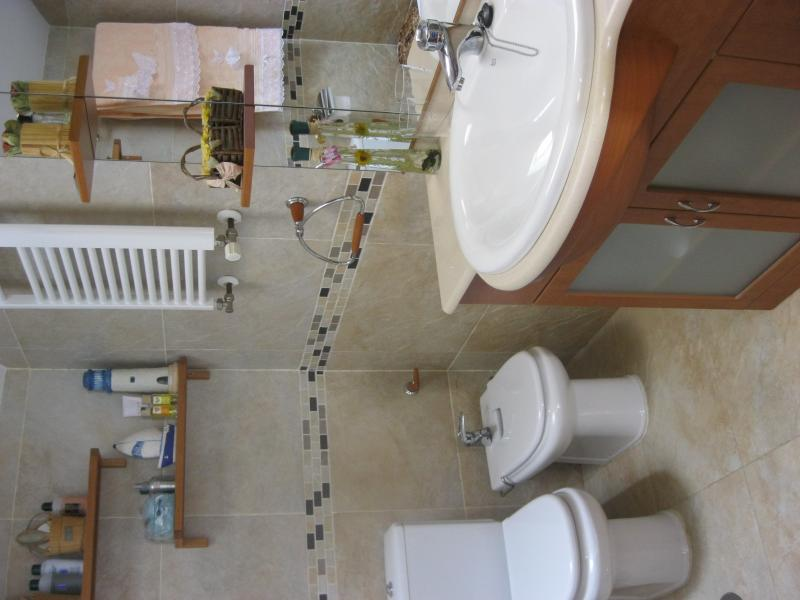 Baño - Casa rural en alquiler de temporada en calle Aquiles, Sacedón - 84869308
