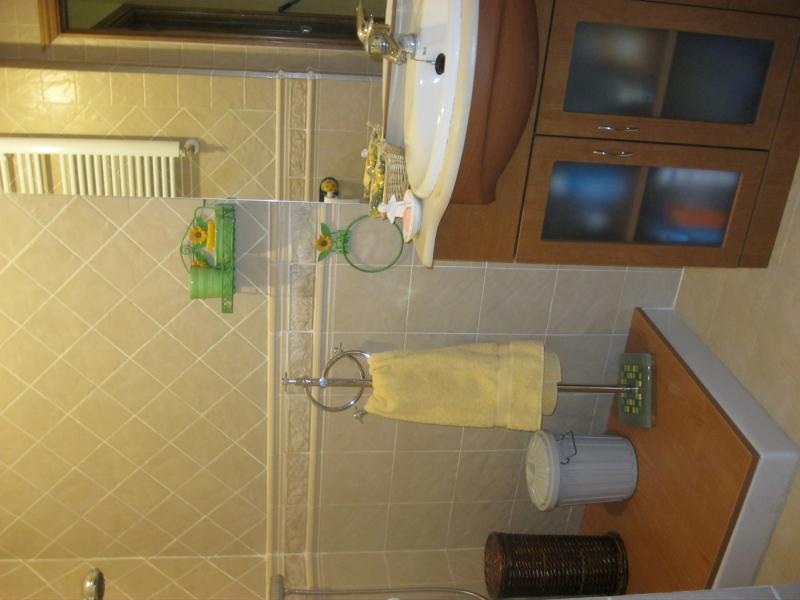 Baño - Casa rural en alquiler de temporada en calle Aquiles, Sacedón - 84869359
