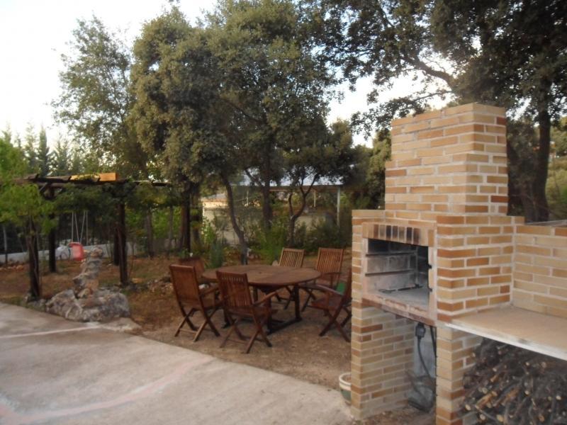 Jardín - Casa rural en alquiler de temporada en calle Aquiles, Sacedón - 84870392