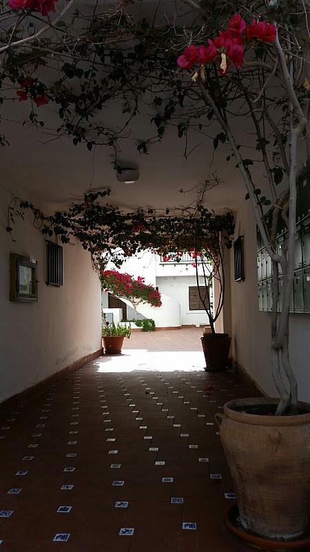 Dúplex en alquiler de temporada en calle Jacinto Benavente, Playa Mucha Vista en Campello (el) - 282802130