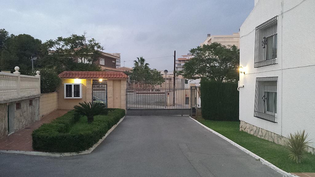 Vistas - Bungalow en alquiler en calle Sargo, Playa de San Juan - 300539415