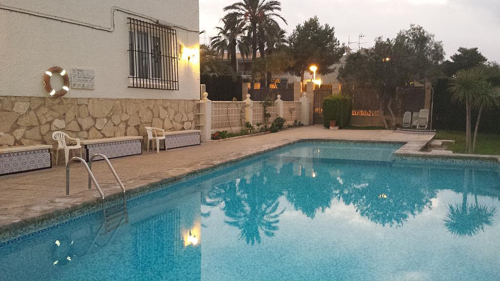 Piscina - Bungalow en alquiler en calle Sargo, Playa de San Juan - 300539748