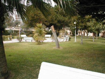 Piso en alquiler en calle Holanda, Playa de San Juan - 94728455