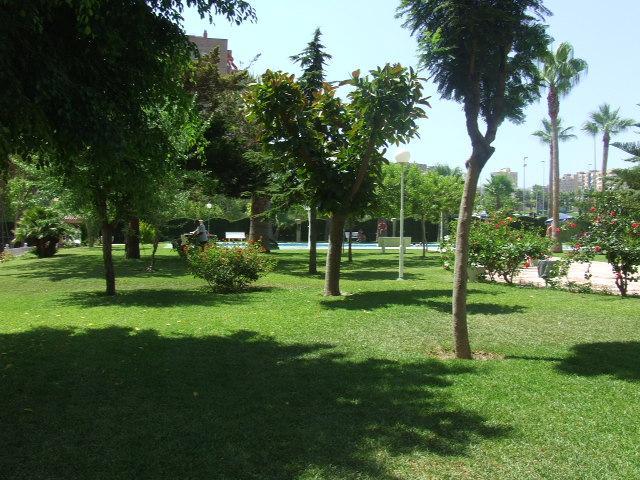 Piso en alquiler en calle Holanda, Playa de San Juan - 94728476