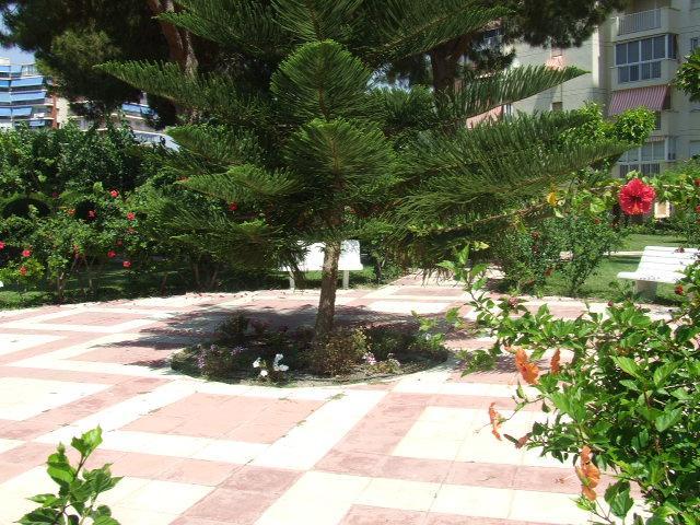 Piso en alquiler en calle Holanda, Playa de San Juan - 94728479