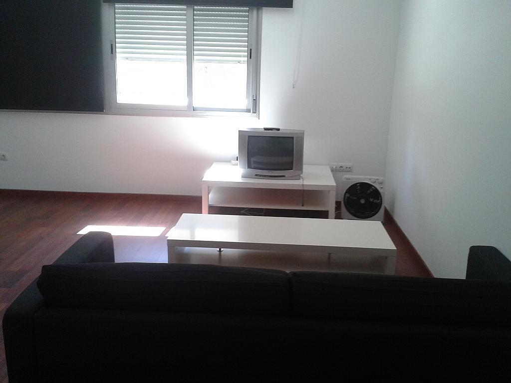 Estudio en alquiler en calle Paises Escandinavos, Playa de San Juan - 154633446