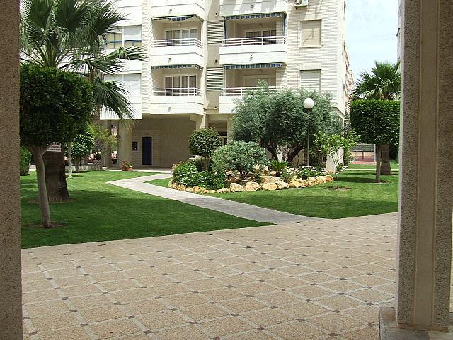 Piso en alquiler de temporada en calle Francia, Playa de San Juan - 202527168