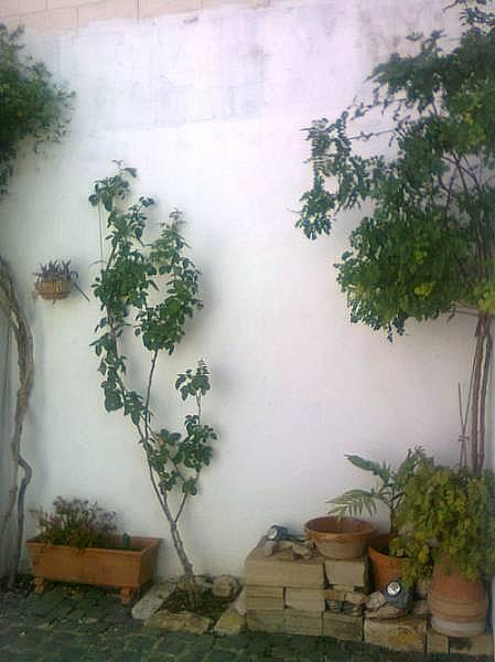 Foto - Casa adosada en alquiler en calle Ausias March, Càrcer - 244498903