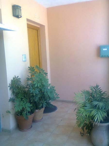 Foto - Casa adosada en alquiler en calle Ausias March, Càrcer - 244498906
