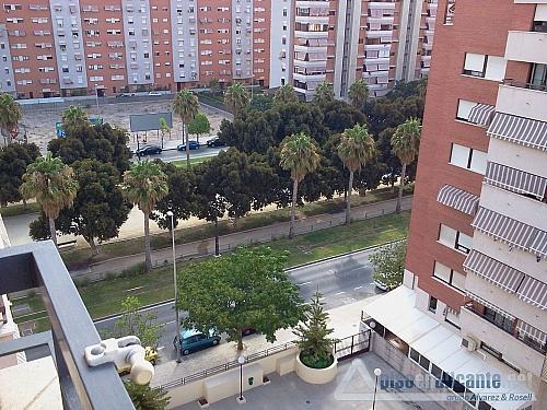 Piso en Miriam Blasco - Piso en alquiler en San Juan de Alicante/Sant Joan d´Alacant - 302156261