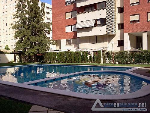 Piso en Miriam Blasco - Piso en alquiler en San Juan de Alicante/Sant Joan d´Alacant - 302156264