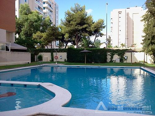 Piso en Miriam Blasco - Piso en alquiler en San Juan de Alicante/Sant Joan d´Alacant - 302156270