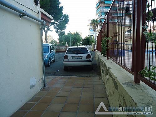 Apartamento en la playa - Piso en alquiler opción compra en Alicante/Alacant - 325625174