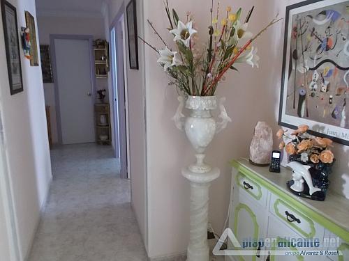 Vivienda exterior - Piso en alquiler opción compra en Alicante/Alacant - 331273084