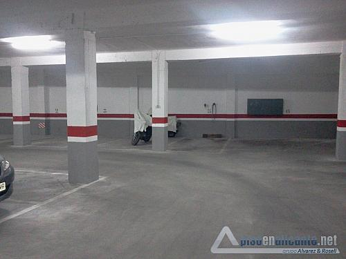 No disponible - Piso en alquiler opción compra en San Blas - Santo Domingo en Alicante/Alacant - 158346833