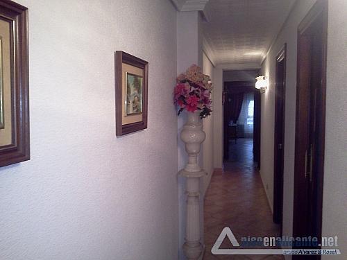 No disponible - Piso en alquiler opción compra en San Blas - Santo Domingo en Alicante/Alacant - 158346851
