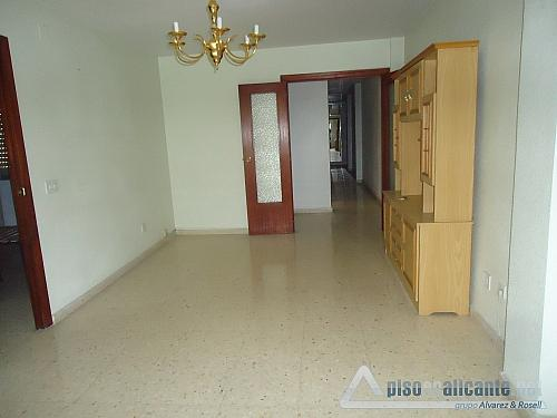 No disponible - Piso en alquiler opción compra en Alicante/Alacant - 163616723