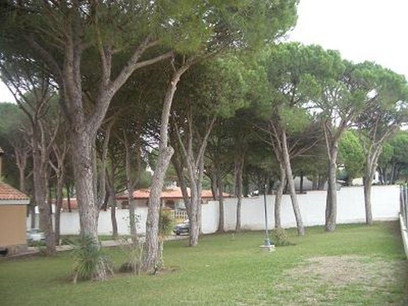 Chalet en alquiler en urbanización La Barrosa, La Barrosa en Chiclana de la Frontera - 57009239