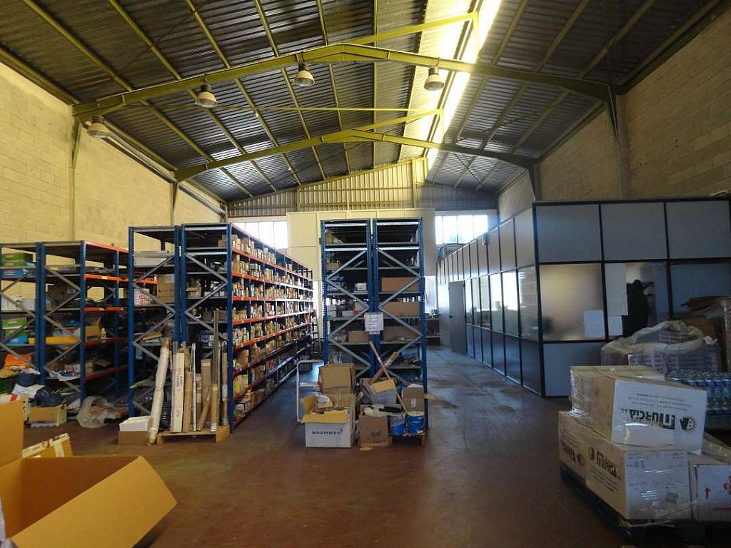Detalle - Nave en alquiler en Alicante/Alacant - 322427904