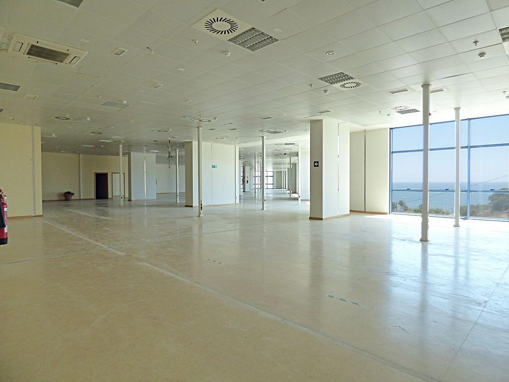 Otros - Oficina en alquiler en calle Avinguda de Jean Claude Combaldieu, San Gabriel en Alicante/Alacant - 301696437