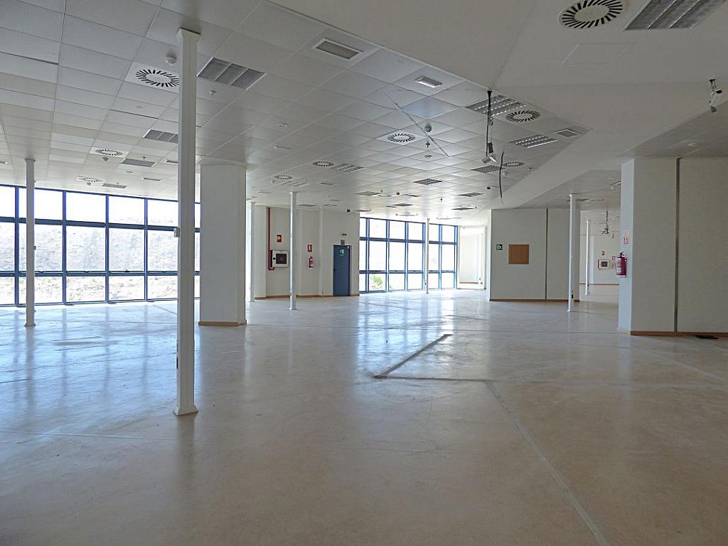 Otros - Oficina en alquiler en calle Avinguda de Jean Claude Combaldieu, San Gabriel en Alicante/Alacant - 301696440