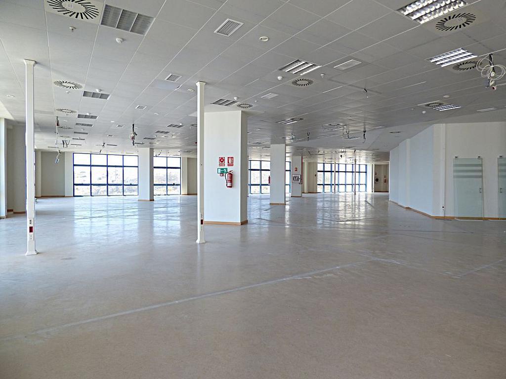 Otros - Oficina en alquiler en calle Avinguda de Jean Claude Combaldieu, San Gabriel en Alicante/Alacant - 301696443