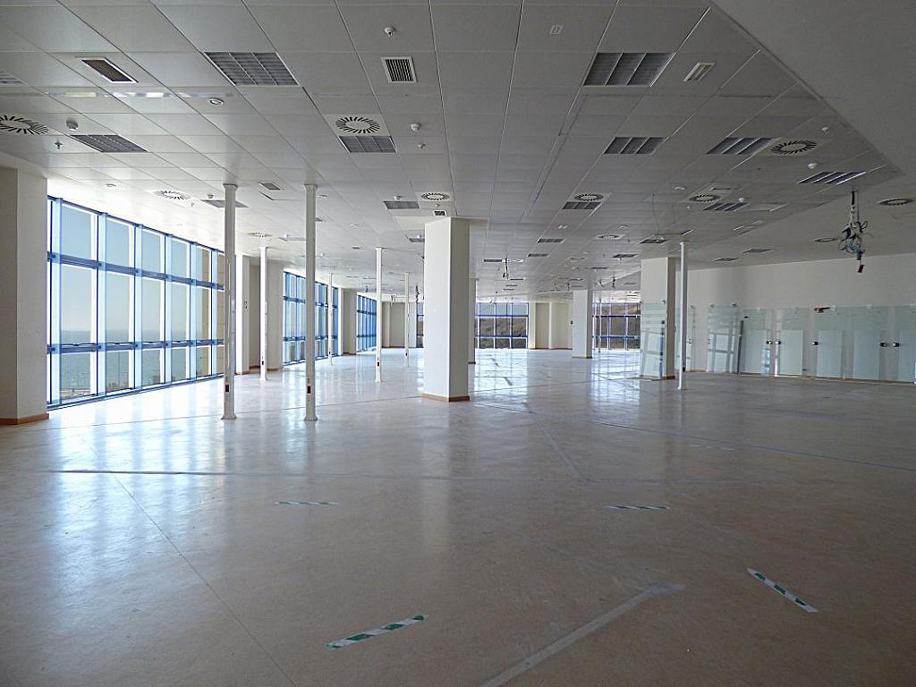 Otros - Oficina en alquiler en calle Avinguda de Jean Claude Combaldieu, San Gabriel en Alicante/Alacant - 301696446