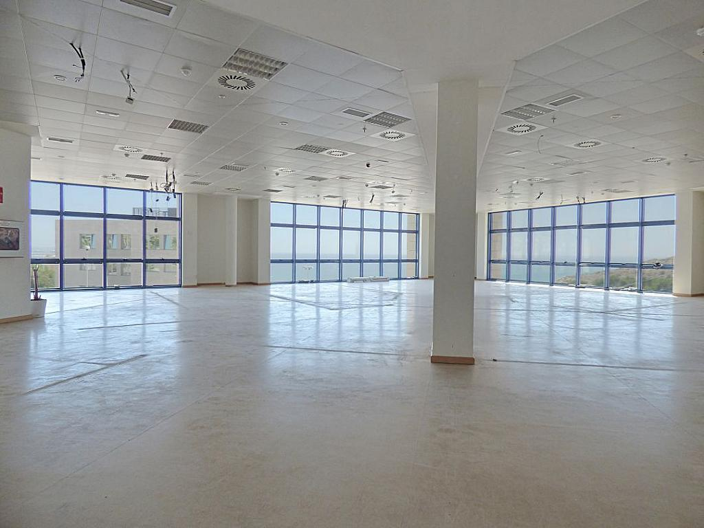 Otros - Oficina en alquiler en calle Avinguda de Jean Claude Combaldieu, San Gabriel en Alicante/Alacant - 301696455