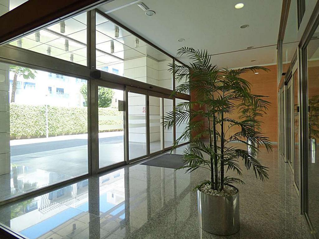 Otros - Oficina en alquiler en calle Avinguda de Jean Claude Combaldieu, San Gabriel en Alicante/Alacant - 301696476