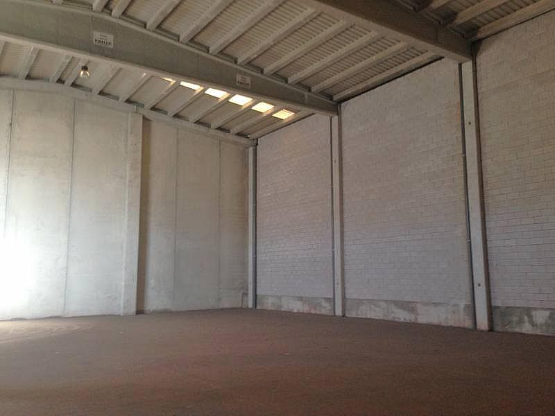 Foto - Nave industrial en alquiler en calle Dracma, Disperso Partidas en Alicante/Alacant - 245548169